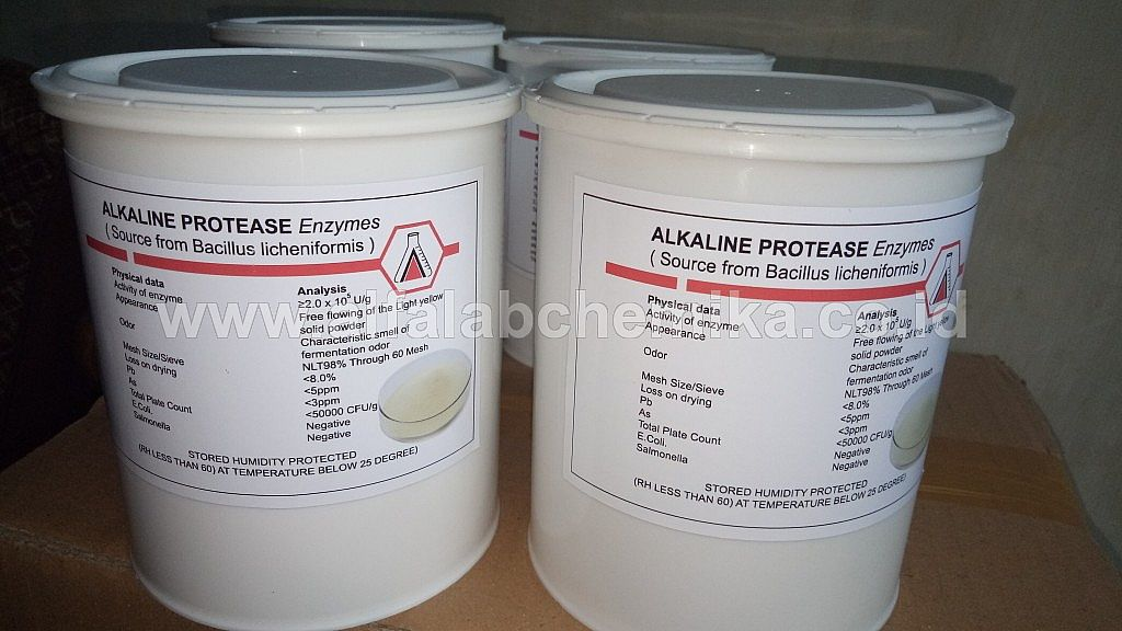 Alkaline Protease Enzymes